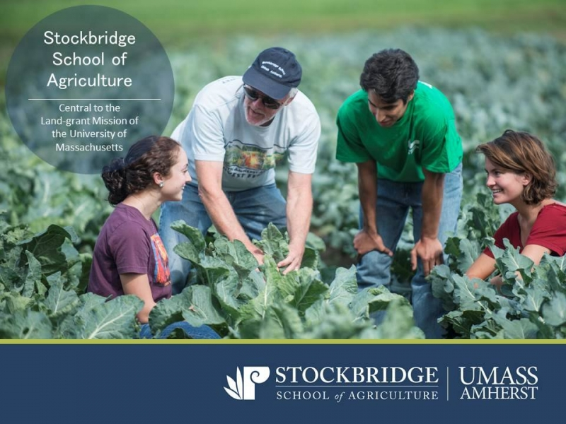Certificate in Sustainable Food and Farming | www umassonline net